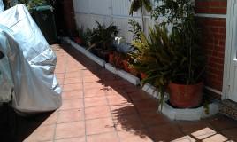 Arriate de ladrillos, pintura en blanco y colocación de plantas