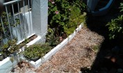 Limpieza de jardín, reparación de macetas y columnas, arriates de ladrillos, pintura (todo en blanco)