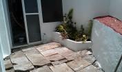 Limpieza, arriate de ladrillos, pintura en blanco y rojo. plantas