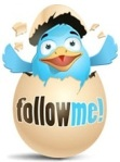 twitter-duck-follow-me2